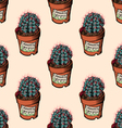 Echinocactus grusonii vector image