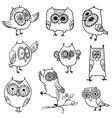 doodle owls vector image