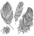 feather set doodle line ornamental feathers on vector image