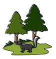 skunk animal cartoon vector image