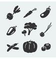 Set of symbols vegetables vector image