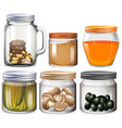 Different types of food in jars vector image