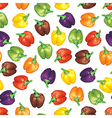 multicolor peppers pattern vector image