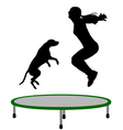 Woman and dog trampoline vector image