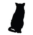 cat silhouette 3 vector image