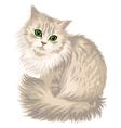 Kitik vector image