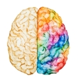 Watercolor brain vector image