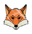 head fox animal wildlife nature image vector image