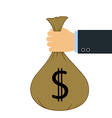 bag with money vector image vector image
