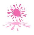Pink Splash - Splatter or Stain on White vector image