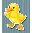 Duckling vector image vector image