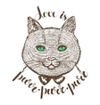 cat with lettering vector image