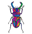 Hand drawn insect scribble icon vector image