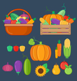 Organic fruits and vegetables vector image