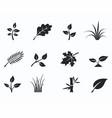 black monochrome floral icon set vector image