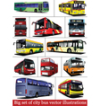 bus collection vector image