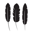 feathers silhouette isolated icon vector image
