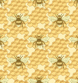Sketch bee and honey cells in vintage style vector image