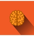 Flat Human Brain with Long Shadow vector image