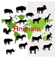 Animals and map vector image