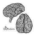 Brain Doodle Set vector image