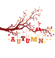 autumn tree branch with birds vector image
