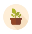 Plant in pot flat icon garden flowerpot vector image