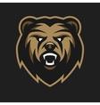 Angry Bear logo symbol vector image