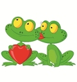 Cute cartoon frog couple holding red heart vector image vector image
