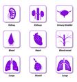 icons internal human organs vector image