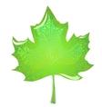 Green maple leaf vector image