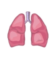 Lung detailed vector image