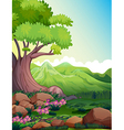 A big tree at the forest vector image vector image