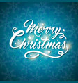 christmas card with snowflakes and greeting vector image