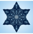 Beautiful Blue Snowflake vector image