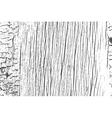 Dry Wood Overlay vector image