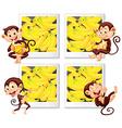 Happy monkeys eating banana vector image vector image