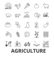 agriculture farmer field farming tractor vector image