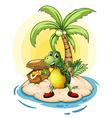 Turtle Treasure Island vector image
