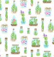 Terrariums on white background seamless pattern vector image