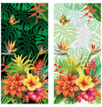 cards from tropical flowers vector image