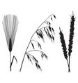 crops vector image
