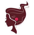 Beautiful brown hair silhouette isolated on white vector image vector image