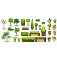 Different species of plants vector image