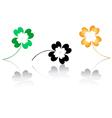 lucky clovers vector image