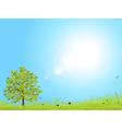 spring landscape with blue sky vector image