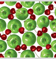 apple cherry vector image vector image