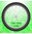 Bicycle Wheel Isolated vector image