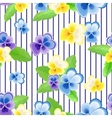 Pansies on strips background vector image vector image