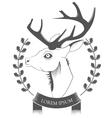 Deer Head on white background vector image
